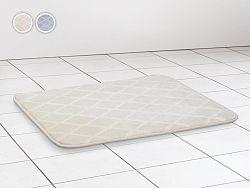 Kúpeľňová predložka Dormeo Aloe Vera 3D, 50x70 cm, sivá